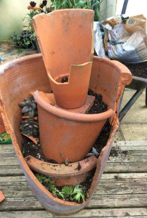 Fairy/mini garden work in progress add pots and soil