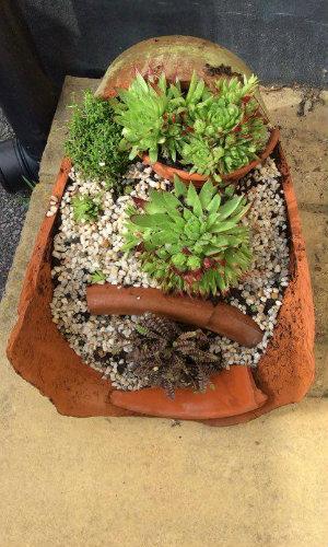 Broken Terracotta Pot used on it's side as a fairy/miniture garden