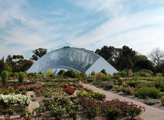 Adelaide Botanic Garden, Adelaide - SA