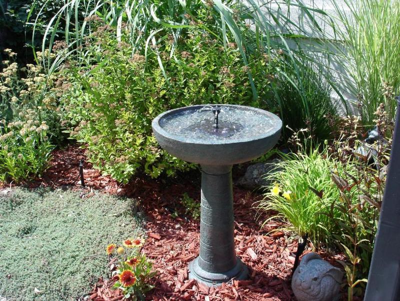 Bird water bath in the garden