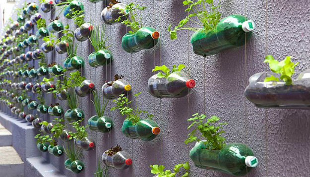 Vertical Gardening - Wall covered in plastic bottle plant pots hung with wire