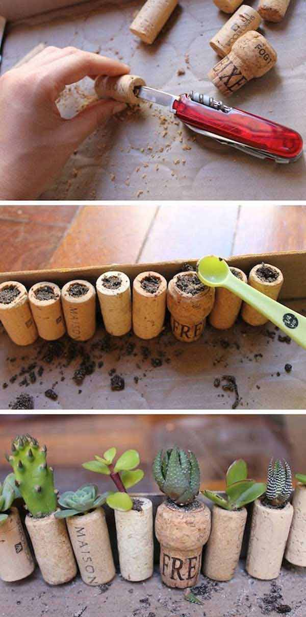 Cork Screws for Pot Plants