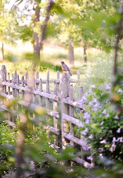 Simple fence made of rustic old wood