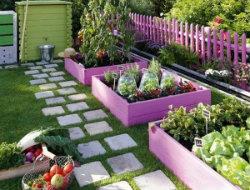 Colourful garden edging