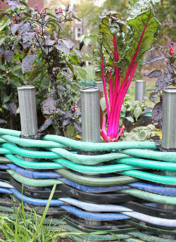 Recycled Hose weaved to make a garden edge to a flower bed