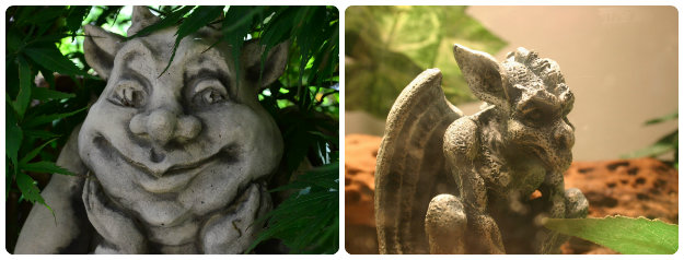 two gargoyle statues, one very scary the other more cartoon like