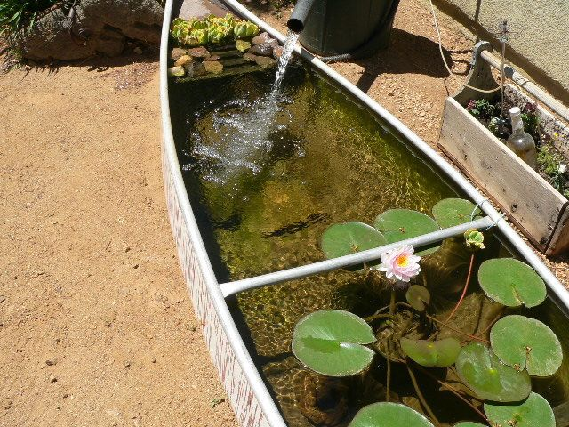 13 gorgeous garden pond ideas for Making a fish pond