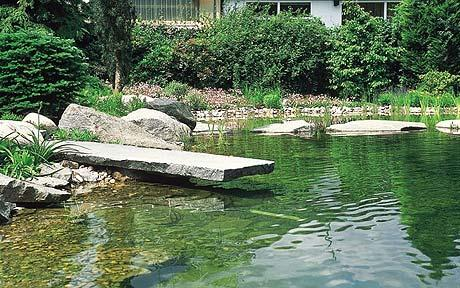large pond with stone jetty