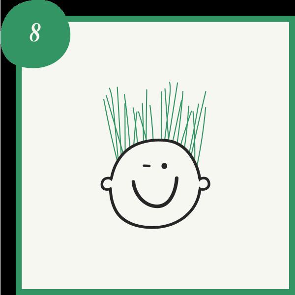 Instructive image - watch your grass head grow