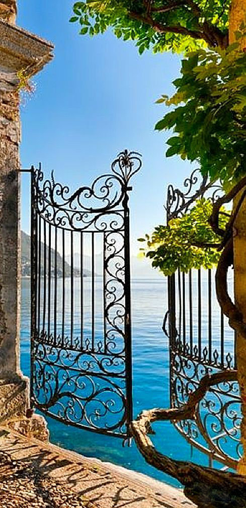 Wonderful wrought iron gate leading to a lake
