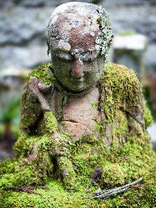 Moss covered Buddah statue