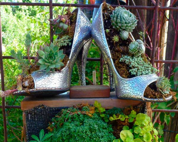 Heels for Pot Plants