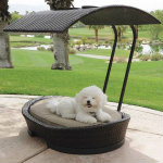 Dog bed with shade cover - Keep Your Pets Cool This Summer