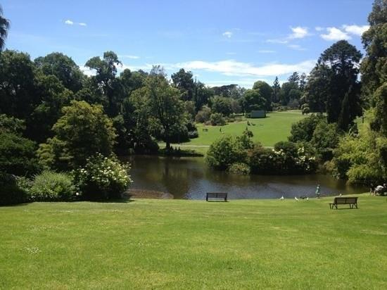 Royal Botanic Gardens, Melbourne - VIC