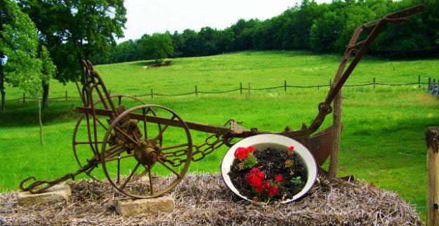 Unusual Garden Ornaments - old farm hand plough