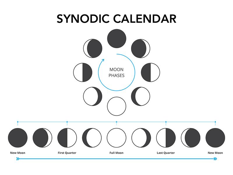 Synodic calendar