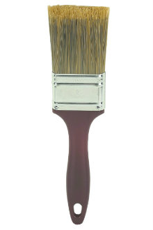 A paint brush for application