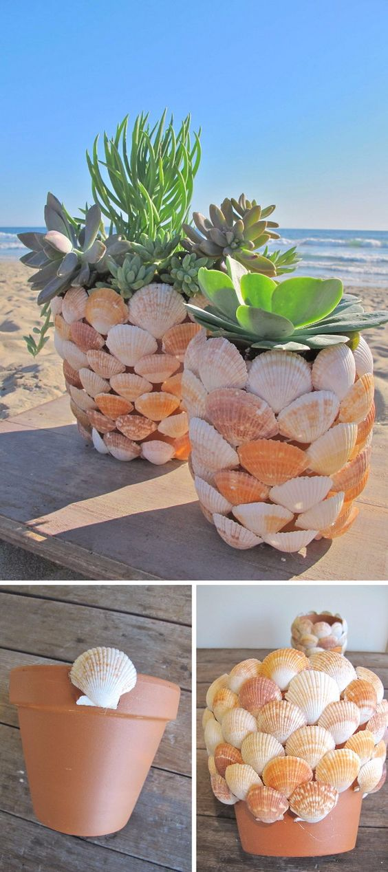 Beautiful shell pot plant ornaments to decorate your garden