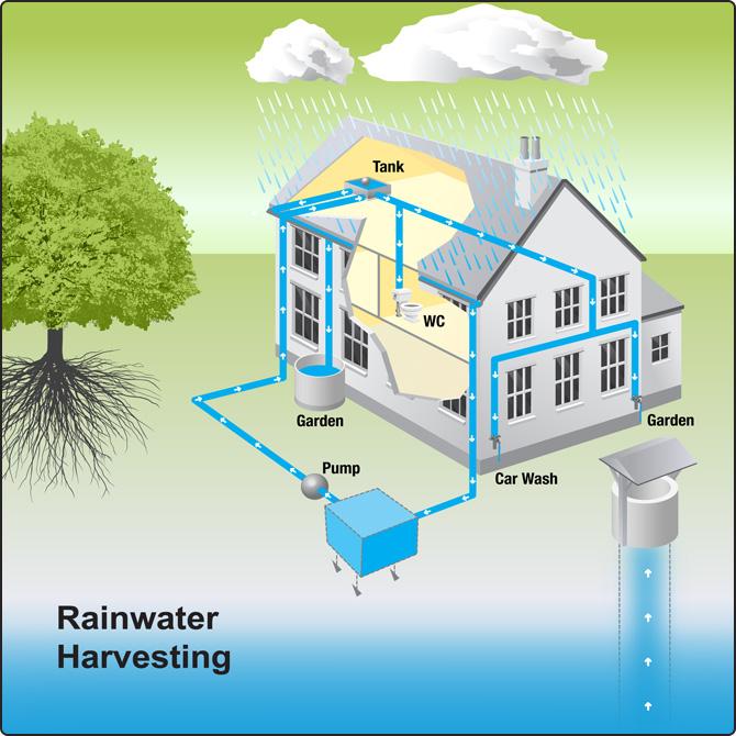 Rain Harvesting